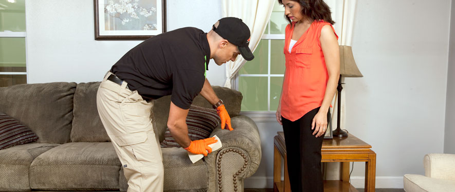 Kinston, NC carpet upholstery cleaning